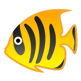 🐠 Tropical Fish, Emoji by Google